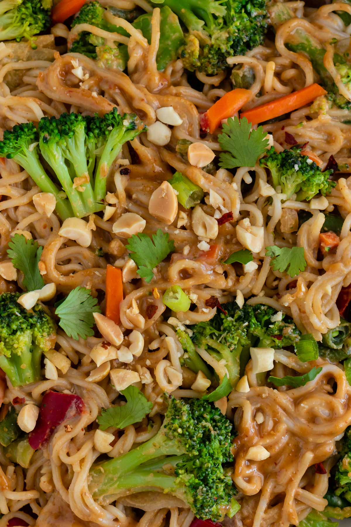 close up of vegan thai peanut noodles mixed with broccoli, peppers, carrots, and peas