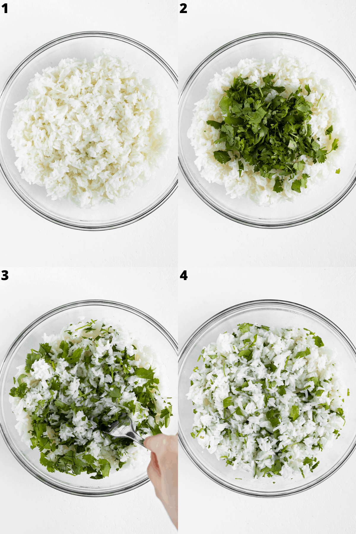 a four step collage combining cilantro with white rice to prepare cilantro lime rice