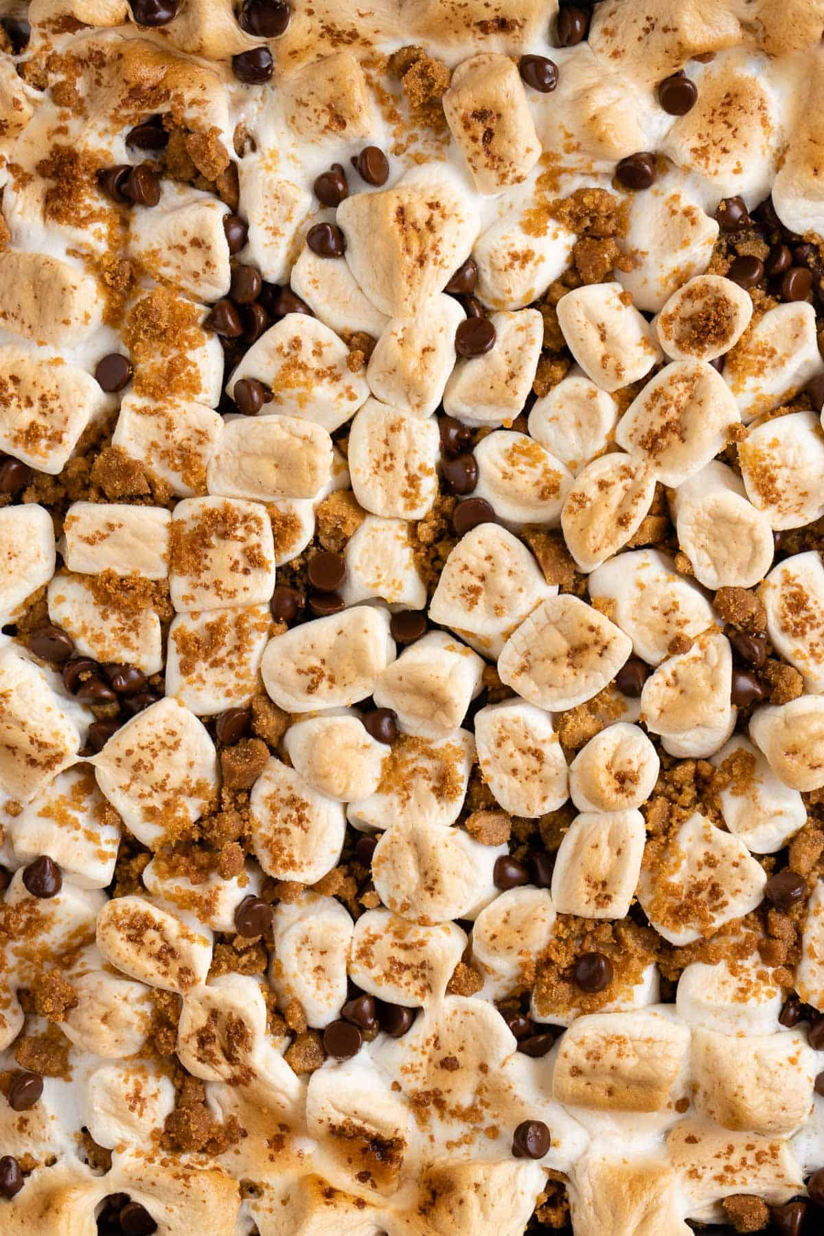 toasted marshmallows, chocolate chips, and graham cracker crumbs
