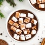 vegan hot chocolate topped with mini marshmallows inside a white ceramic mug, surrounded by a dish filled with cocoa powder and cinnamon sticks